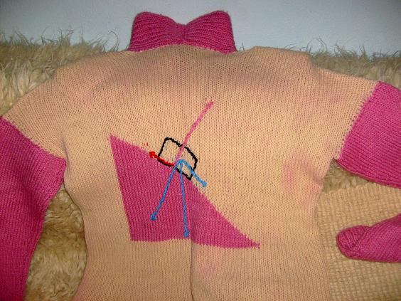 s6309795-puloverul