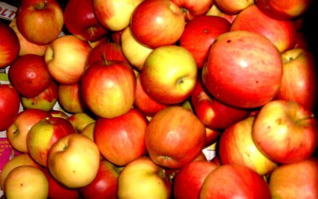 merele mari si coapte